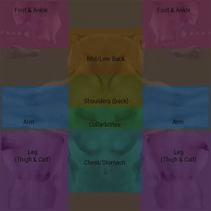 Body texture chart