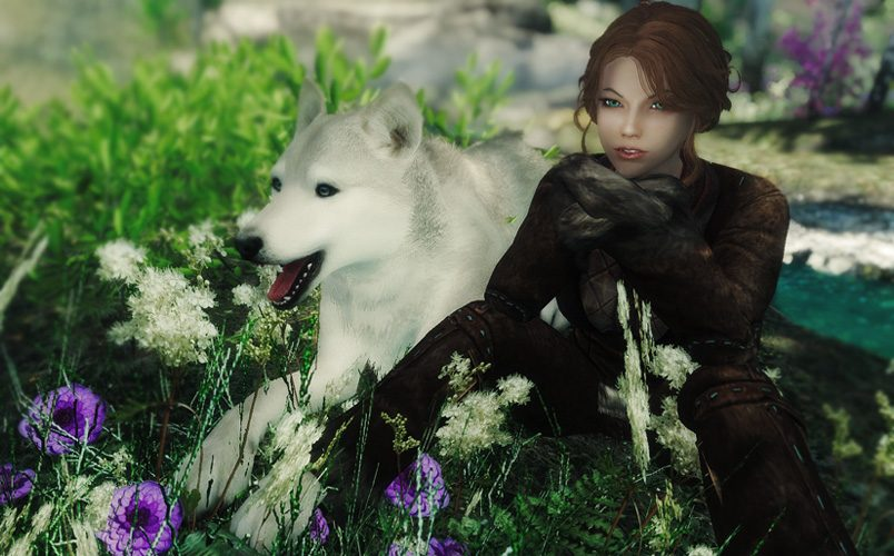Big List of Skyrim Animal Companion Mods – The Winking Skeever
